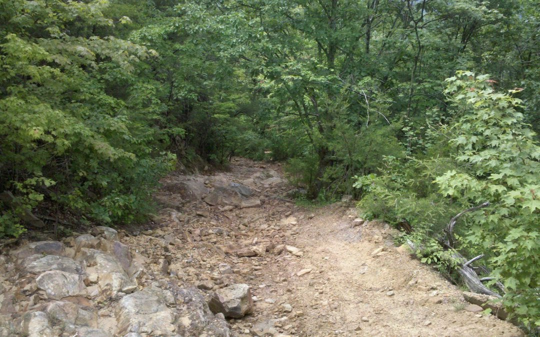 Dragon Back OHV Trail