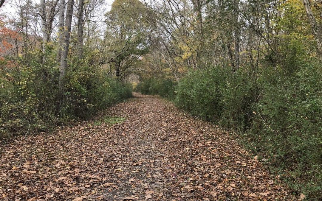 Ballard Lake Trail